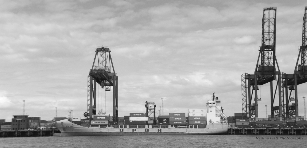 Busy Port Black and White photograph